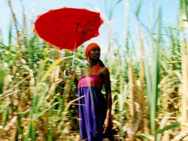Esther Haase: Red Umbrella in Cornfield, Havanna 2003
